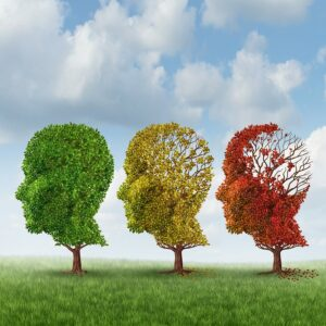 Home Care in Katy TX: Do You Know These 4 Different Types of Dementia?